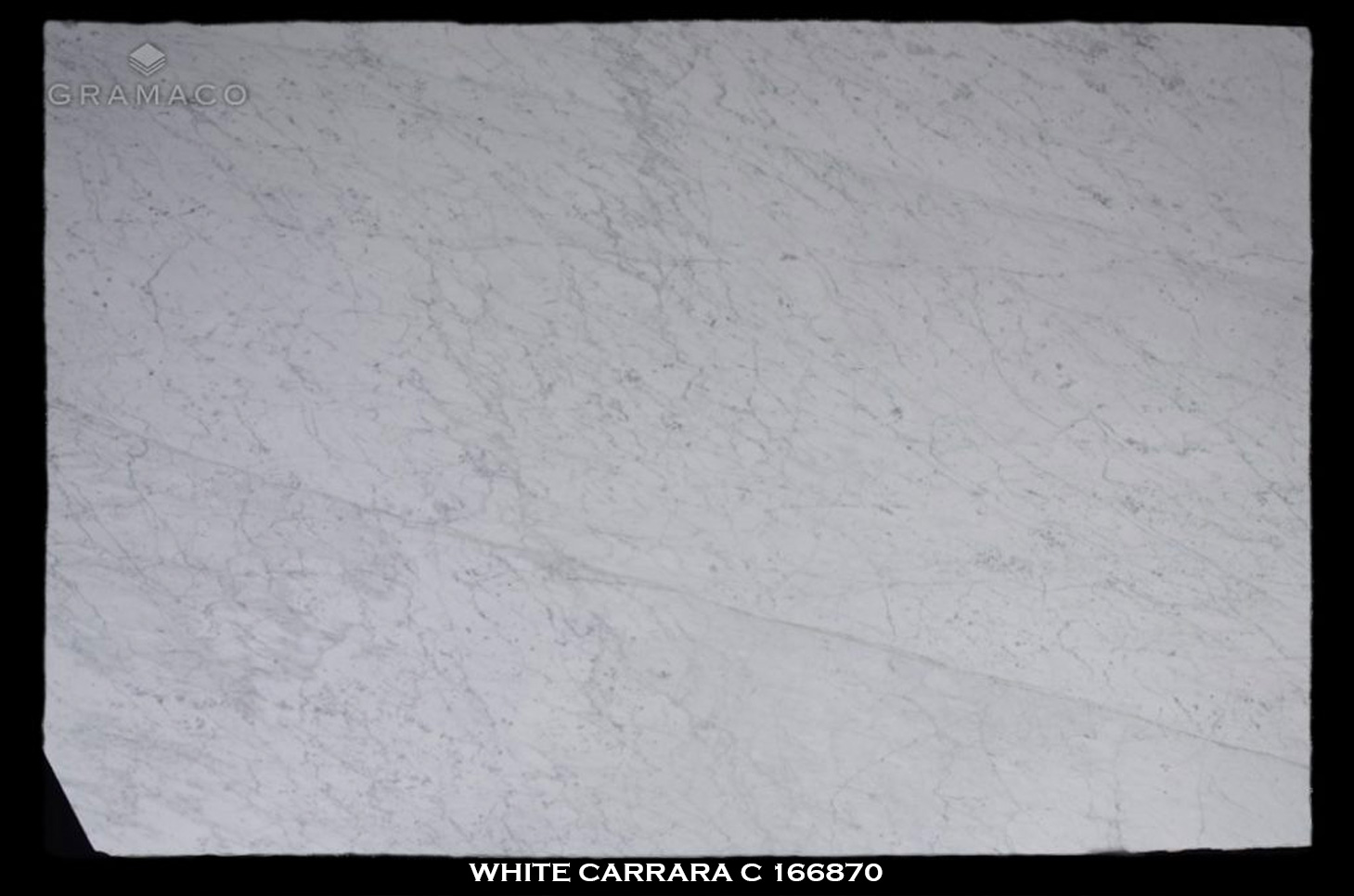 WHITE-CARRARA-C-166870