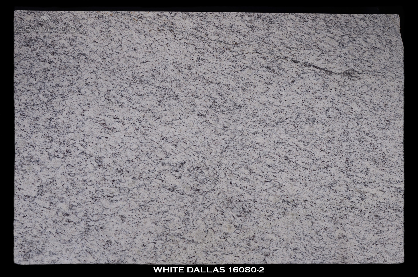 WHITE-DALLAS-16080-2---FULL-SLAB-BLACK