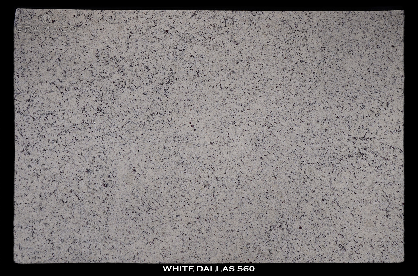 WHITE-DALLAS-560---FULL-SLAB-BLACK