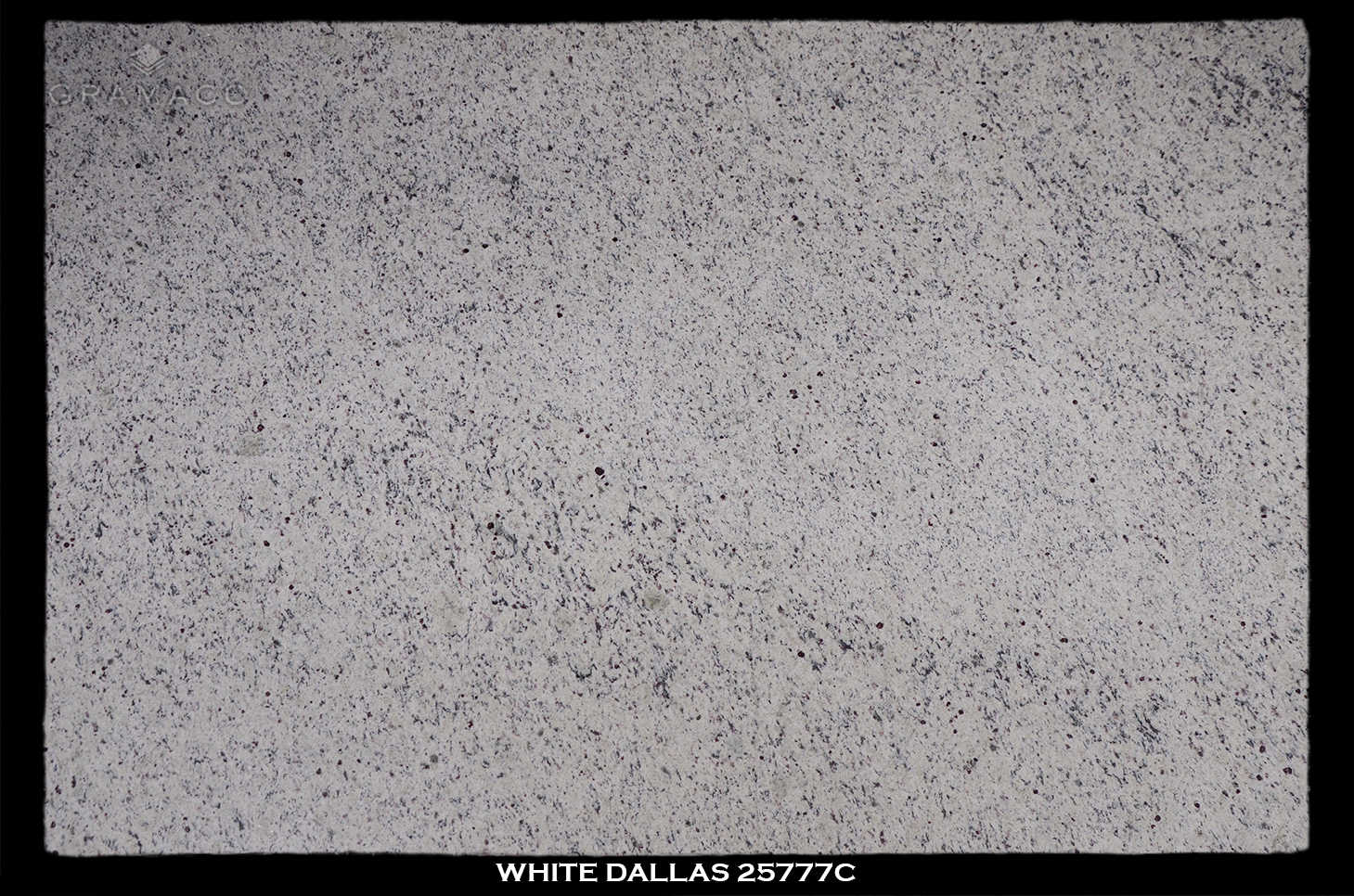 WHITE-DALLAS-25777C---FULL-SLAB-BLACK
