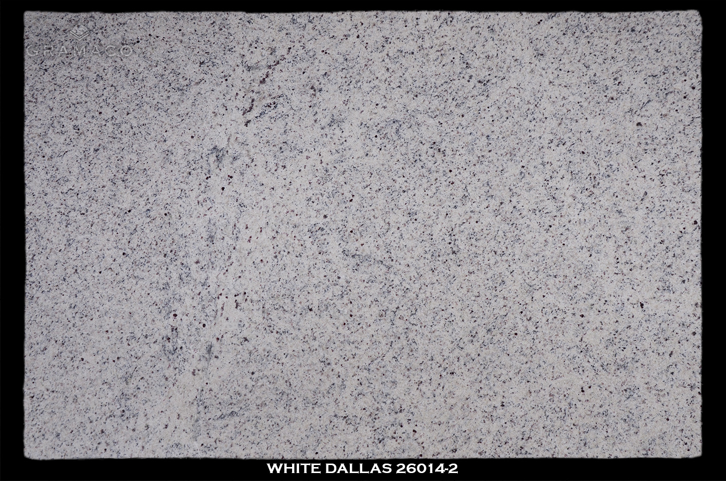 WHITE-DALLAS-26014-2