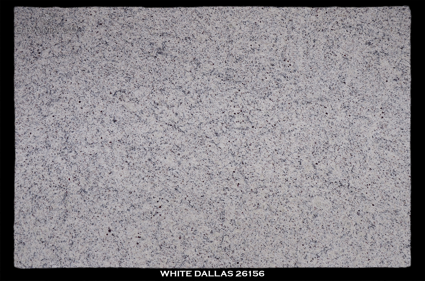 WHITE-DALLAS-26156---FULL-SLAB-BLACK