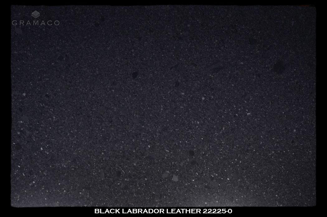 black_labrador_leather22225-0-slab