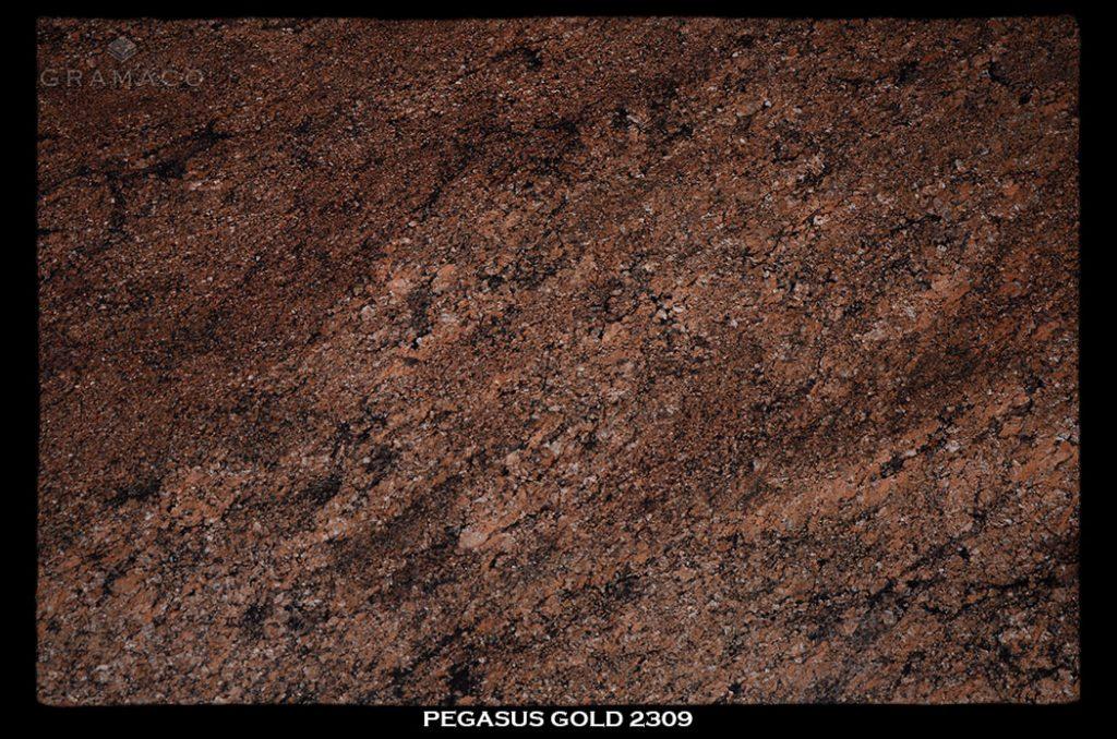 pegasus_gold2309-slab-1-1024x678