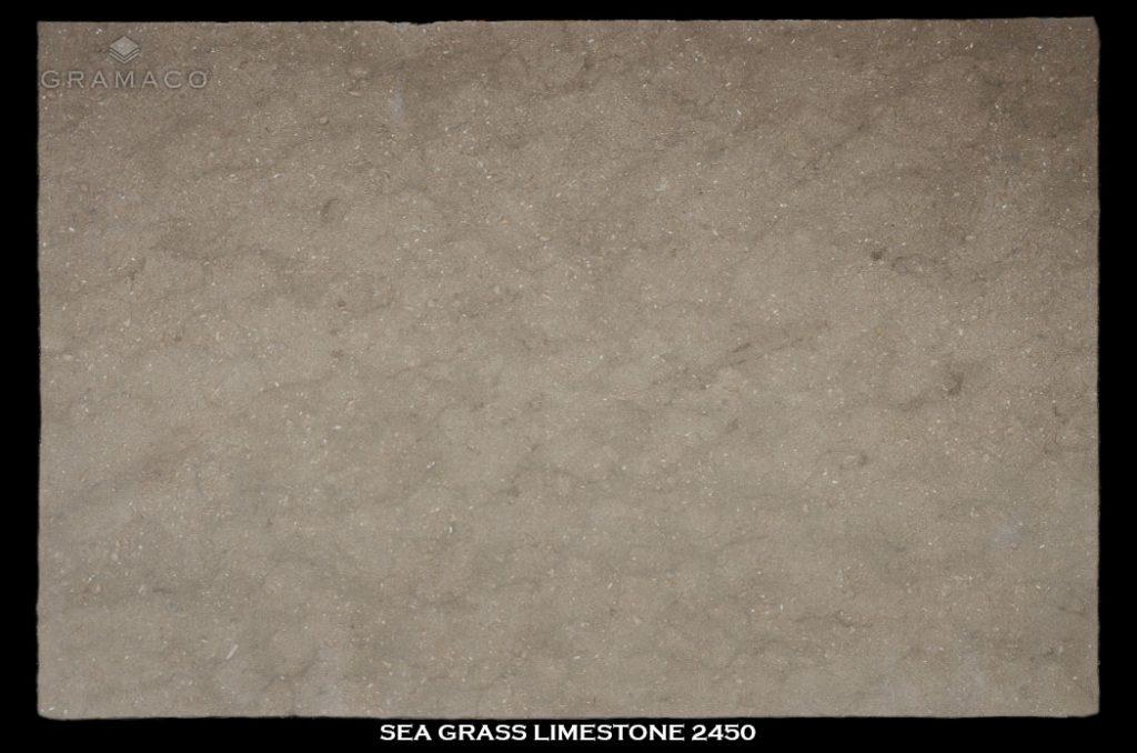 sea_grass_limestone2450-slab-1-1024x678