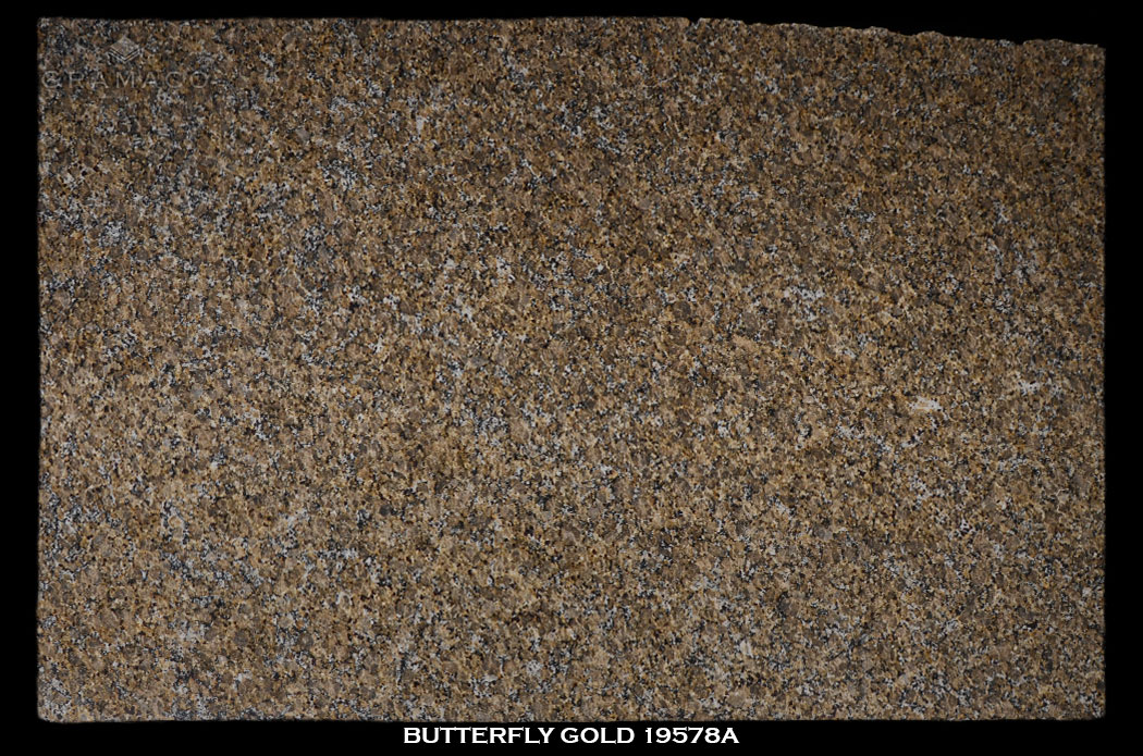 butterfly_gold19578a-slab