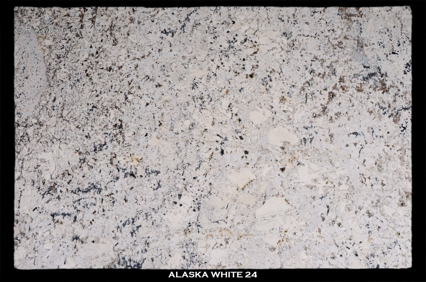 ALASKA-WHITE-24-slab