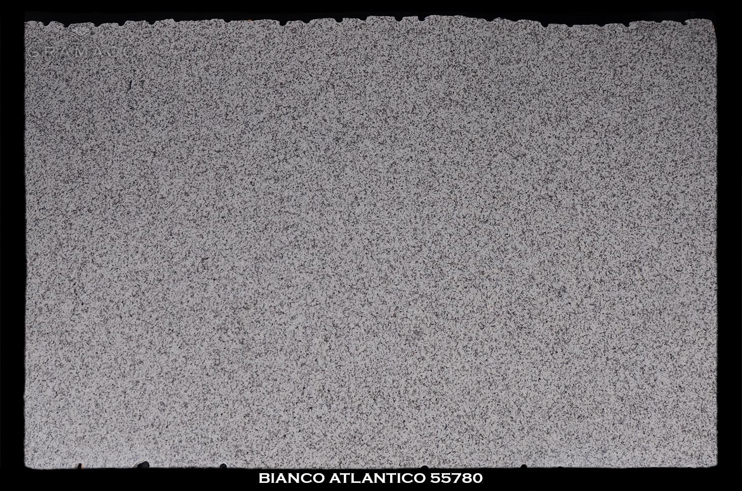 Bianco-Atlantico-55780-slab