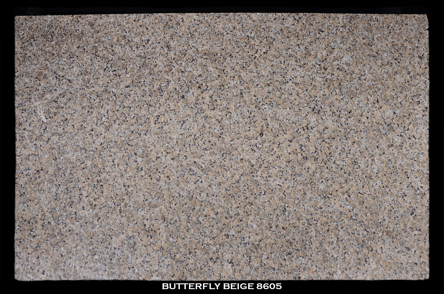 BUTTERFLY-BEIGE-8605---FULL-SLAB-BLACK