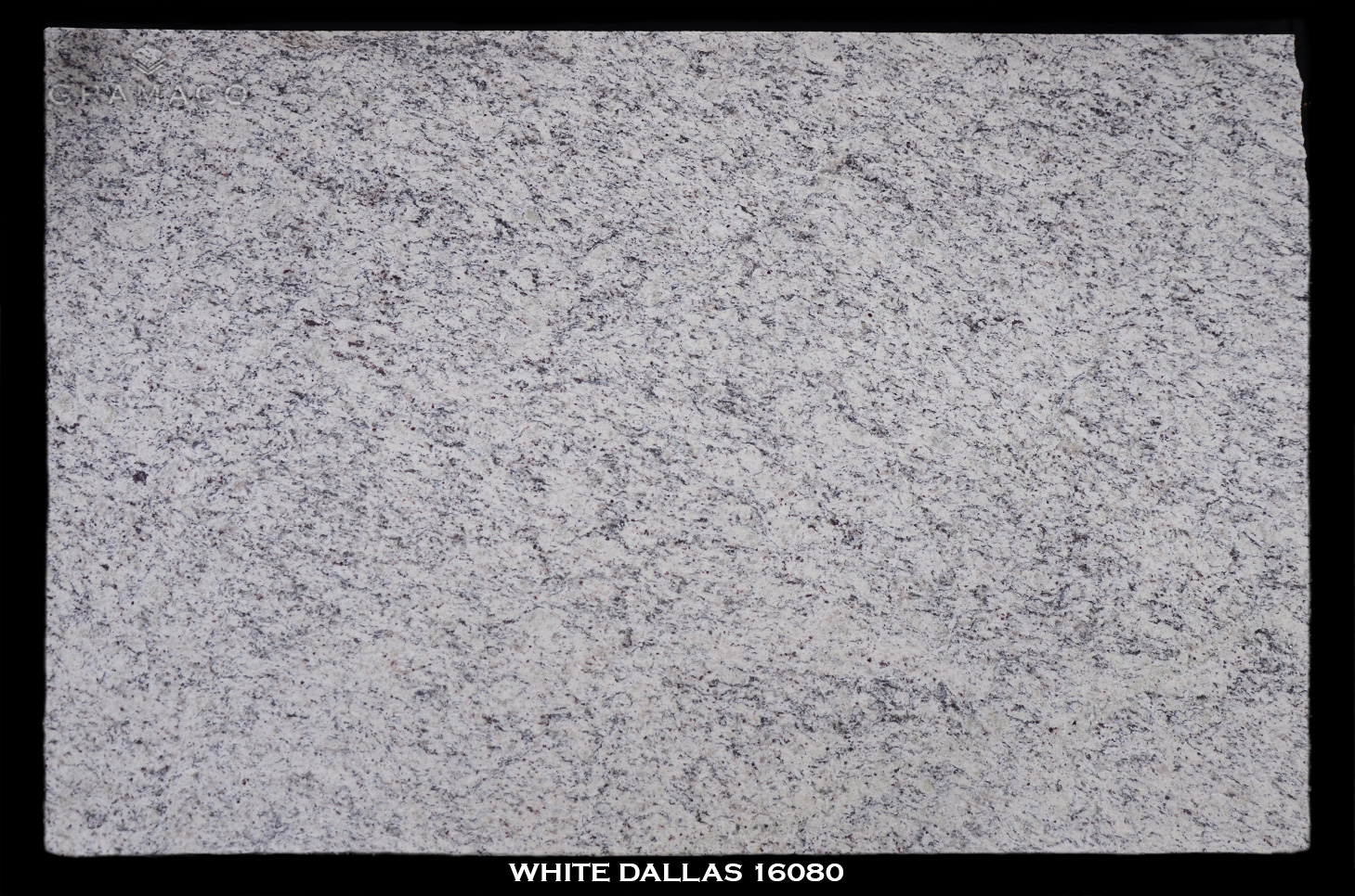 WHITE-DALLAS-16080--FULL-SLAB-BLACK