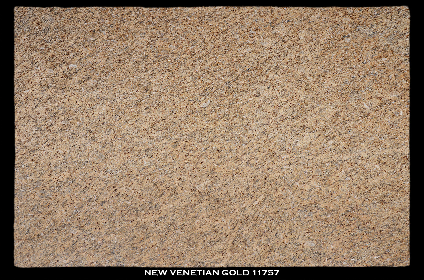 NEW-VENETIAN-GOLD-11757