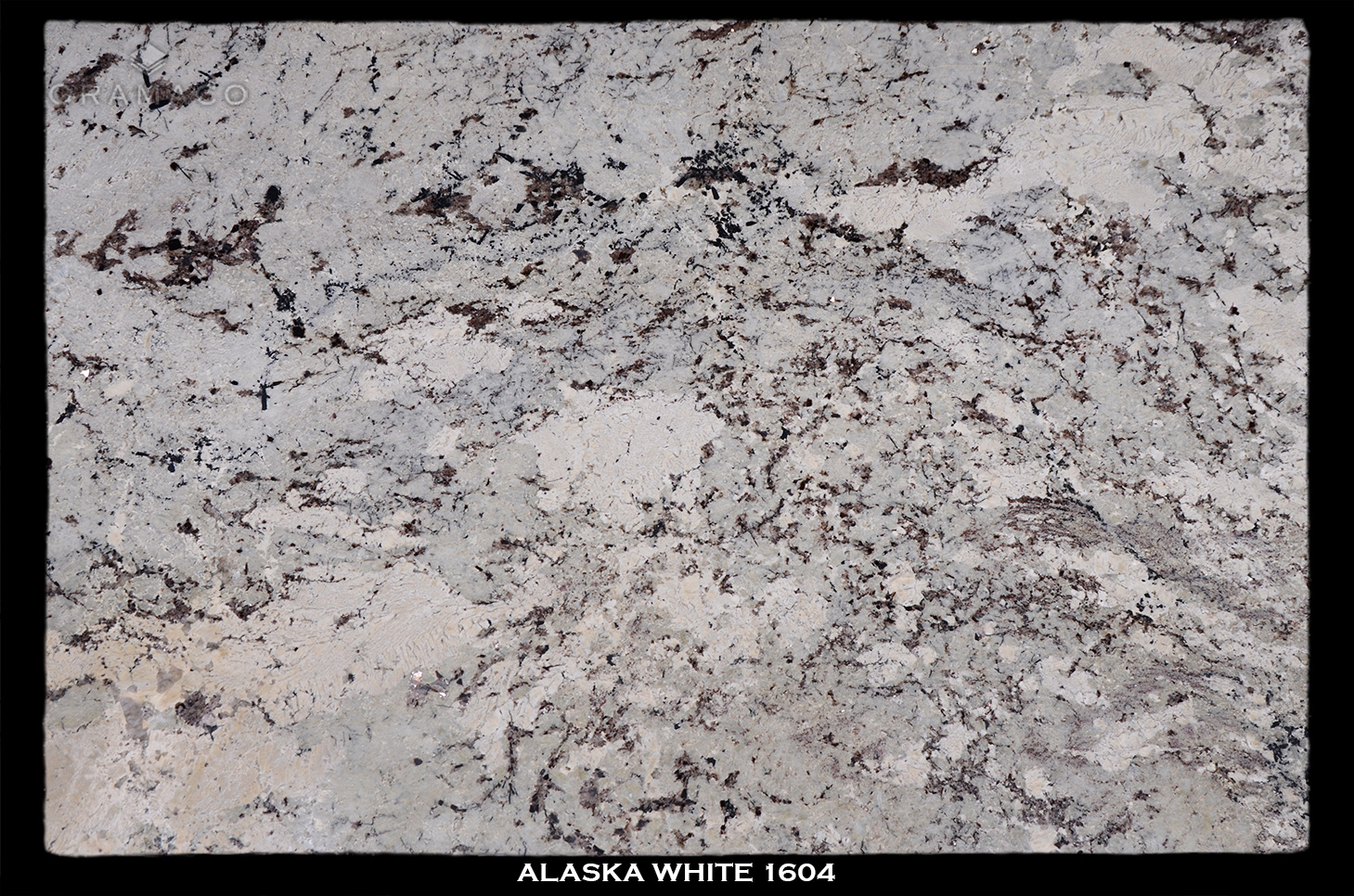 alaska-white-1604