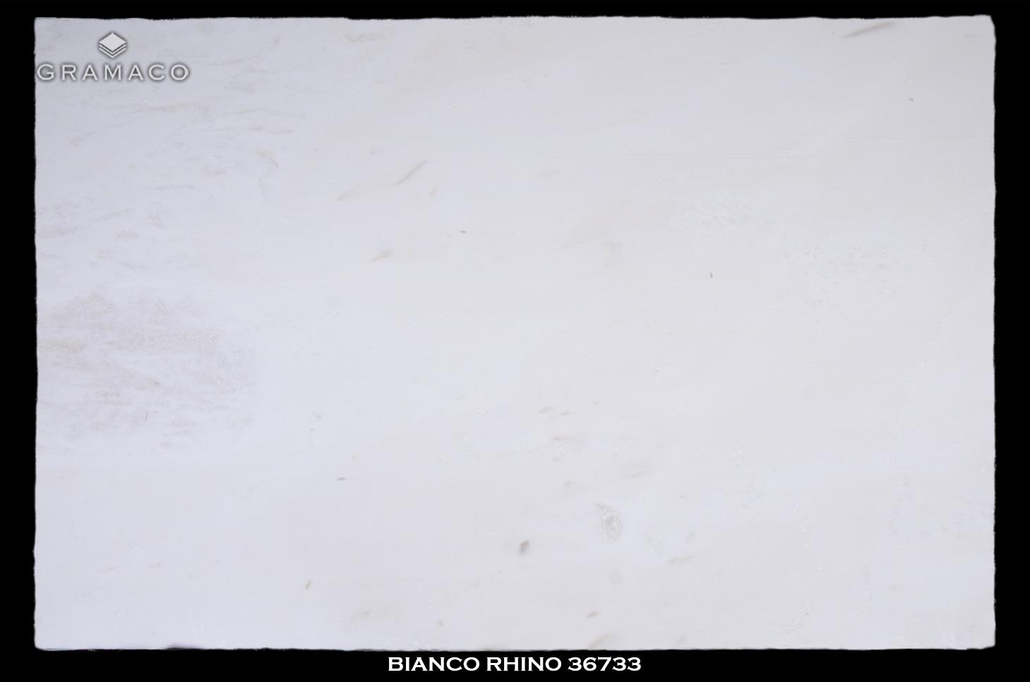 BIANCO-RHINO-36733