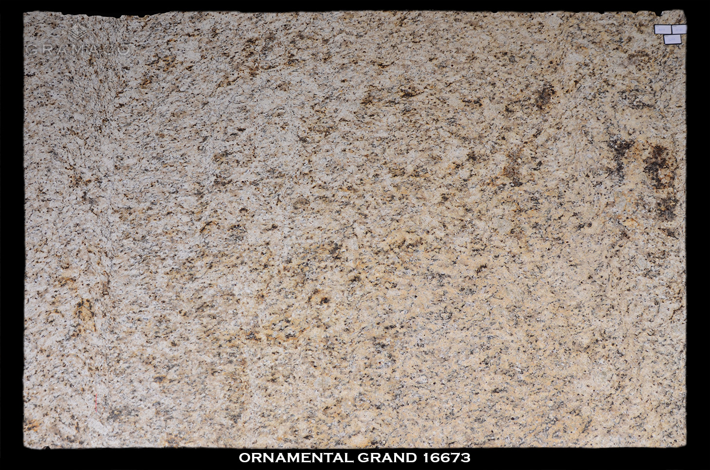 ORNAMENTAL-GRAND-16673-2