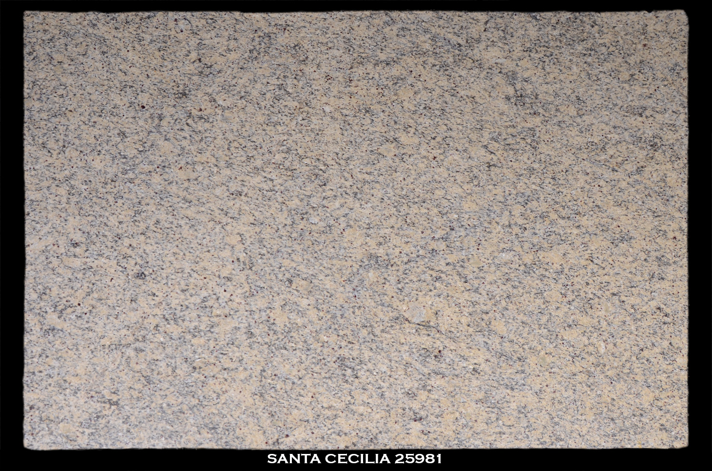 SANTA-CECILIA-25981-SLAB