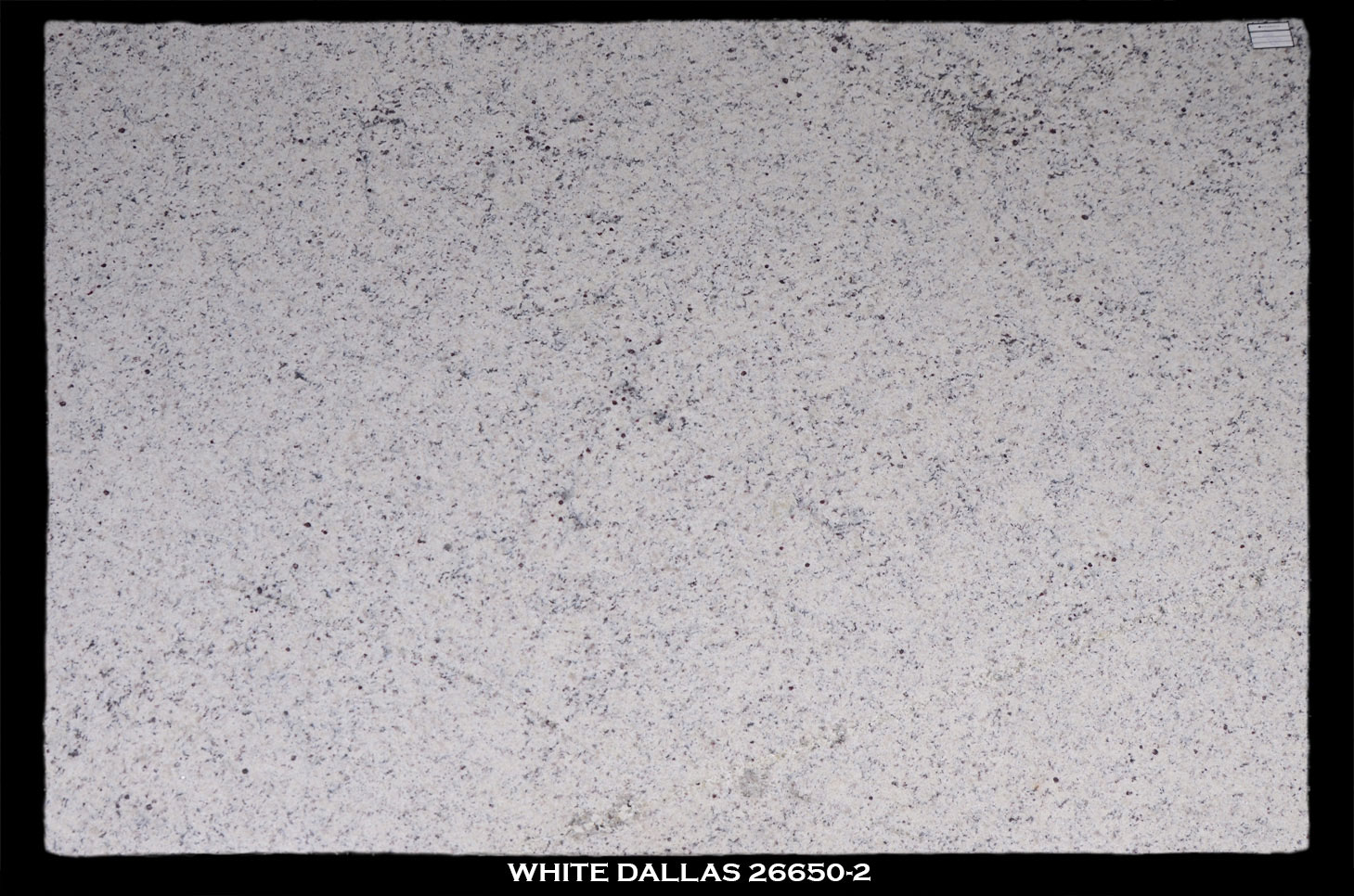 WHITE-DALLAS-26650-SLAB