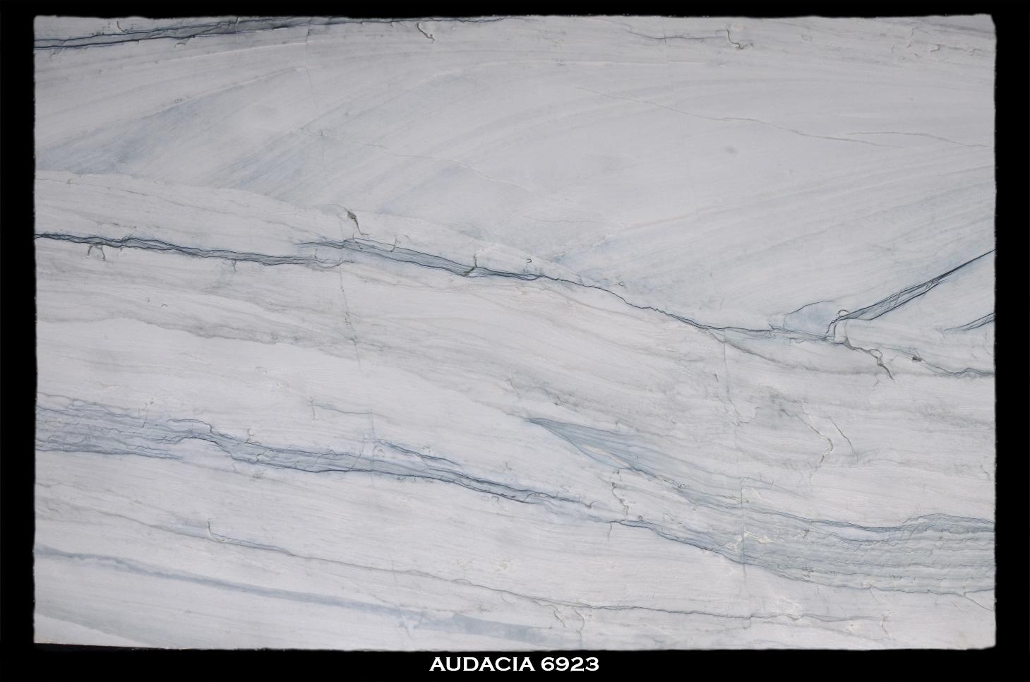 AUDACIA-6923-SLAB