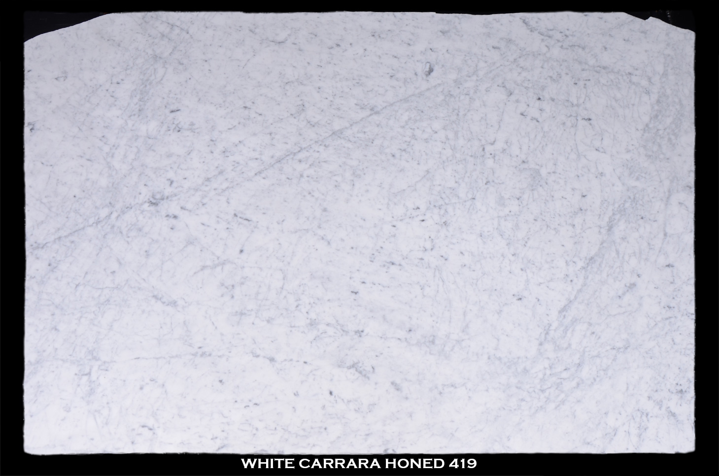 white-carrara-honed-419-slab